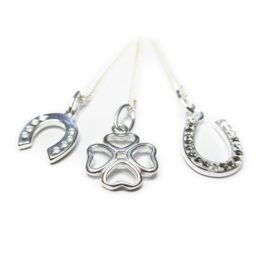 Sterling Silver Necklace Collection of Luck Charms
